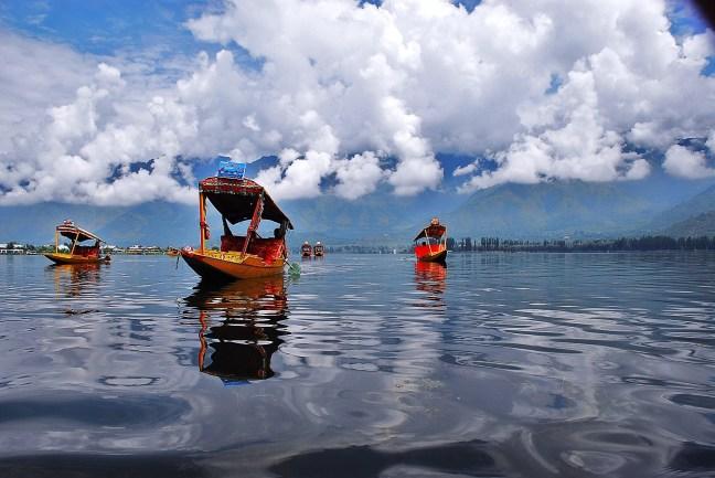haider in Kashmir