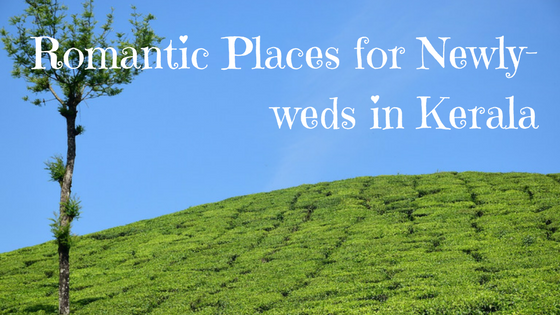 romantic-places-for-newly-weds-in-kerala