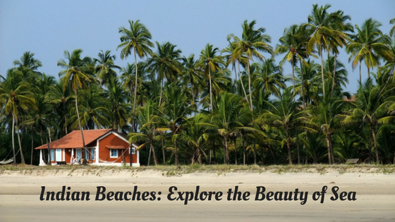 best holiday packages in India